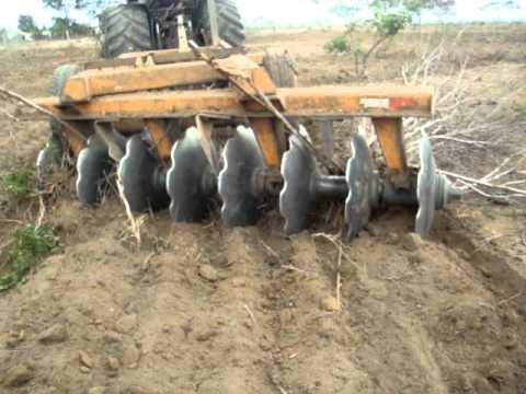 trator valtra bh 180 puxando grade 16x32 na terra seca do norte de minas