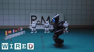 Soccer Playing Robot Predicts the Euro Cup Winner | WIRED