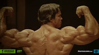 Category arnold blueprint how to train for mass arnold schwarzeneggers blueprint training program malvernweather Image collections