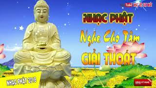 Nhạc Phật Giáo NGHE CHO TÂM GIẢI THOÁT | Những Ca Khúc Phật Giáo Chọn Lọc Dễ Nghe Dễ Ngủ