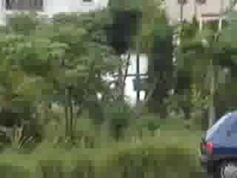Venezuelan Naked Mile