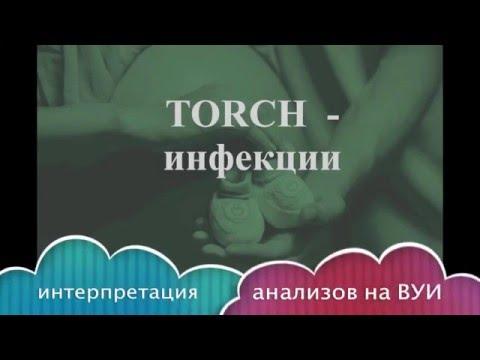 На какие торч-инфекции сдают беременные