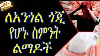 ETHIOPIA - Brain Damaging Habits That You Must Avoid in Amharic