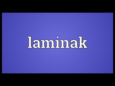 Header of laminak