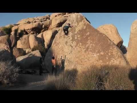 J. Tree [Trailer]