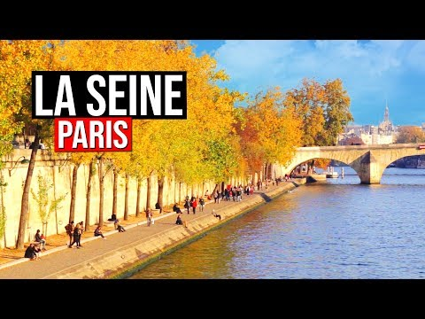 Misc Soundtrack - A Monster In Paris - La Seine English