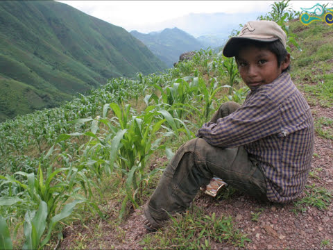 Conjunto Michoacan Apenas Tenia Diez Anos