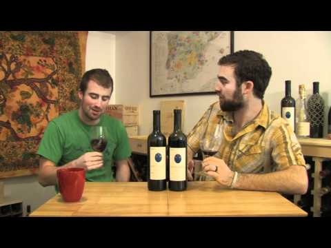 The Wine Brothers - Organic wines from Lazio
