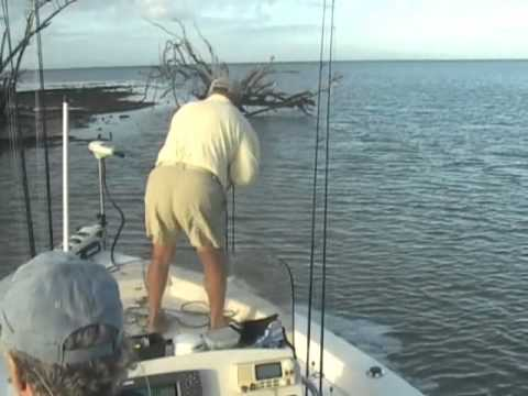 Finesse Charters Chokoloskee Bay Fishing