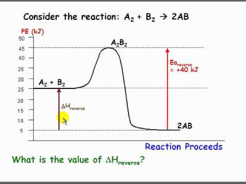 Effect of temperature on reaction rate