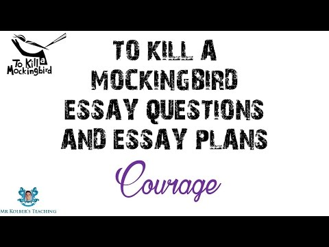 to kill a mockingbird bildungsroman Quizlet provides kill harper lee mockingbird characters activities, flashcards and games start learning today for free.