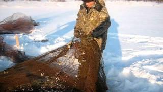 видео сибирский рыбак
