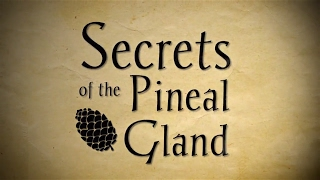 Pineal Gland Secrets & Decalcification Meditation Mix via Binaural Beats Frequency (Video)