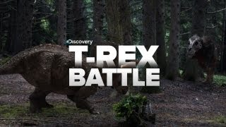Biggest T-Rex BATTLES!