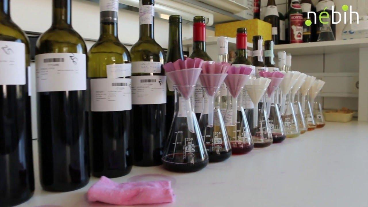 Ezer hektoliter hamis bort találtak, ellenőrzéssorozat indult - videó