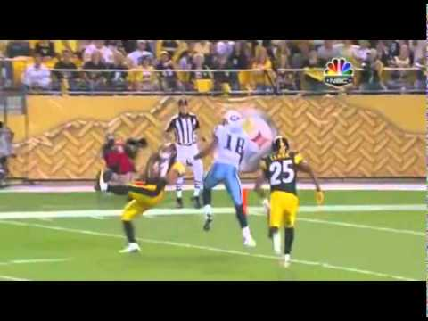 Troy Polamalu Ultimate Highlights