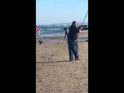 Surfcasting Sport of Israel Slavik