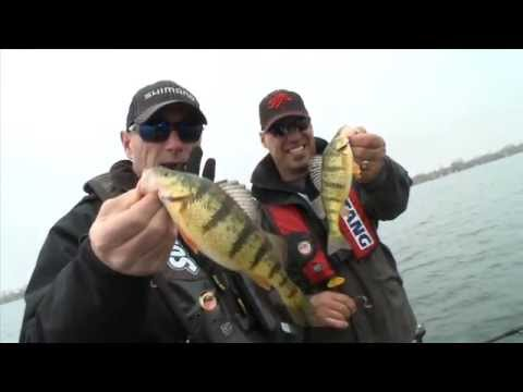 Early Season Perch - Dave Mercer's Facts of Fishing THE SHOW