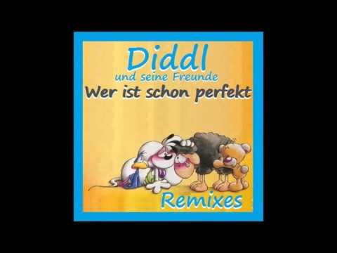 """Diddl und seine Freunde """"Wer ist schon perfekt"""" (Remixes) CD-Maxi Single"""