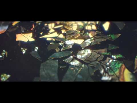Max Cooper - Supine Official video by Tom Geraedts