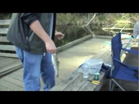 Sacramento golden trout for Lake temescal fishing