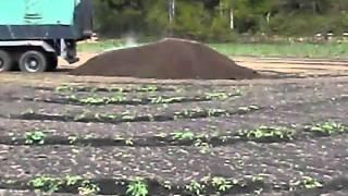 堆肥の蒸気