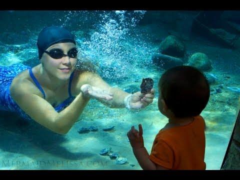 underwater breathhold pro freediver record 3:20 stunt live act