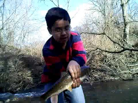 Indiana fishing videos for Brookville lake fishing report