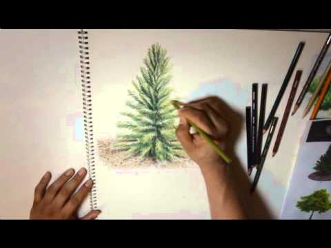 tutorial de arboles PRISMACOLOR.wmv