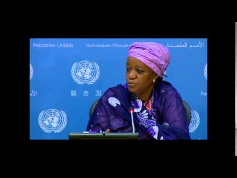 On CAR Rapes by French Troops, UN Expert on Sexual Violence and Conflict Tells ICP No Jurisdiction