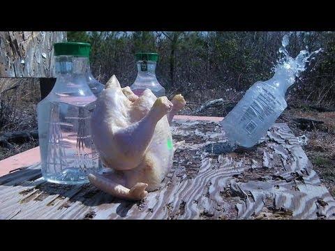 RangeTalk #26 - Hornady NTX 15.5gr .17hmr + Chicken