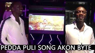Chal Mohan Ranga - Pedda Puli song Akon byte | Nithin and Megha Akash