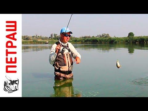 рыбалка с юрием петрашем видео все выпуски с берега