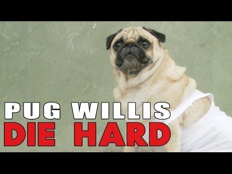 Die Hard Pugs