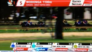 Race 5 Wodonga 21-2-2015. 3 Horse Fall on home turn.