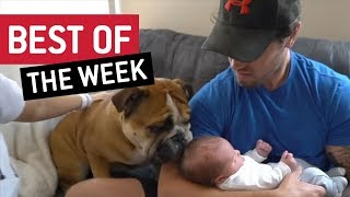 BEST OF THE WEEK - Nice To Meet You