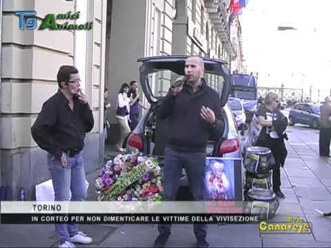 Manifestazione contro la Vivisezione (Torino 13/04/13)