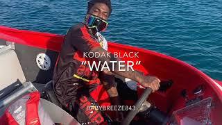 "Kodak Black ""Water"" Type Beat| Prod: Baby Breeze #kodakblack"