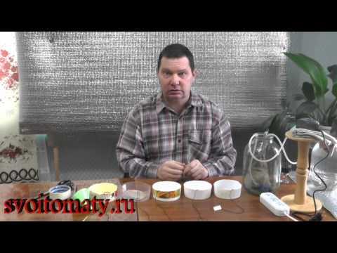 Как правильно сеять семена перцев и баклажана на рассаду – МАСТЕР-КЛАСС