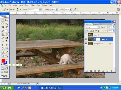 Lesson 1: Introduction to Photoshop Layer Masks
