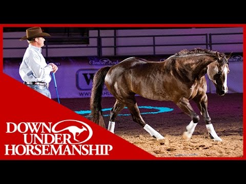 Clinton Anderson With His Amazing Horse mindy In Vegas 2010 video