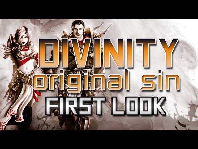 Руководство запуска: Divinity: Original Sin (Beta) по сети