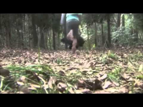 Detective Conan Live Action 3 Music Video [mv] - Zero Gravity [ran And Shinichi] video