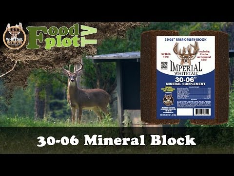 Grow Bigger Bucks with 30-06 Mineral Block for Whitetails