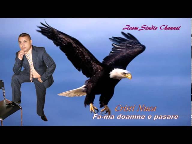 CRISTI NUCA  FA-MA DOAMNE O PASARE, ZOOM STUDIO HORA)