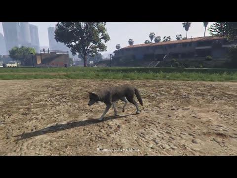 GTA 5 (PS4 Y XBOX ONE) CONVERTIRSE EN ANIMALES EASTER EGG - TRANSFORMARSE EN ANIMALES GTA V NEXT GEN