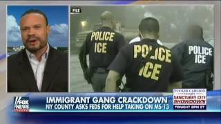 New York county deals with murderous gang of illegals