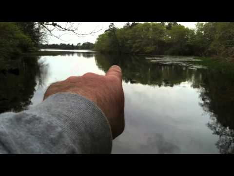 "Fishing report - Lost a Big Striper in Brackish Water ""May-15-2012"" (TeamRippnLipz1) Video"