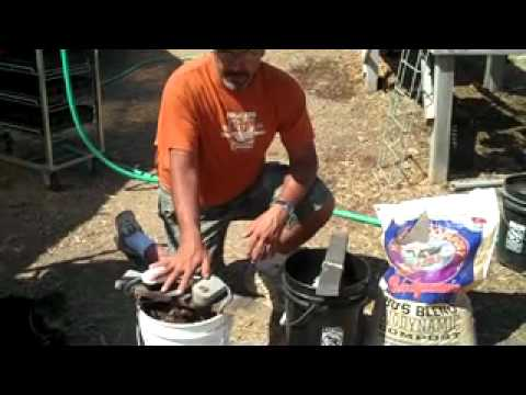 How to make a simple. easy home compost tea brewer