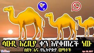 ሳዑዲ አረቢያ ቀን እየቆጠረች ነው። ስደት እና የኢትዮጵያ ወጣቶች - Ethiopians in traveling abroad; why? - DW